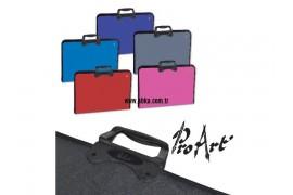 Proart Çanta Renkli